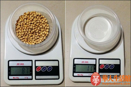 九阳豆浆机DJ13B-D81SG黄豆