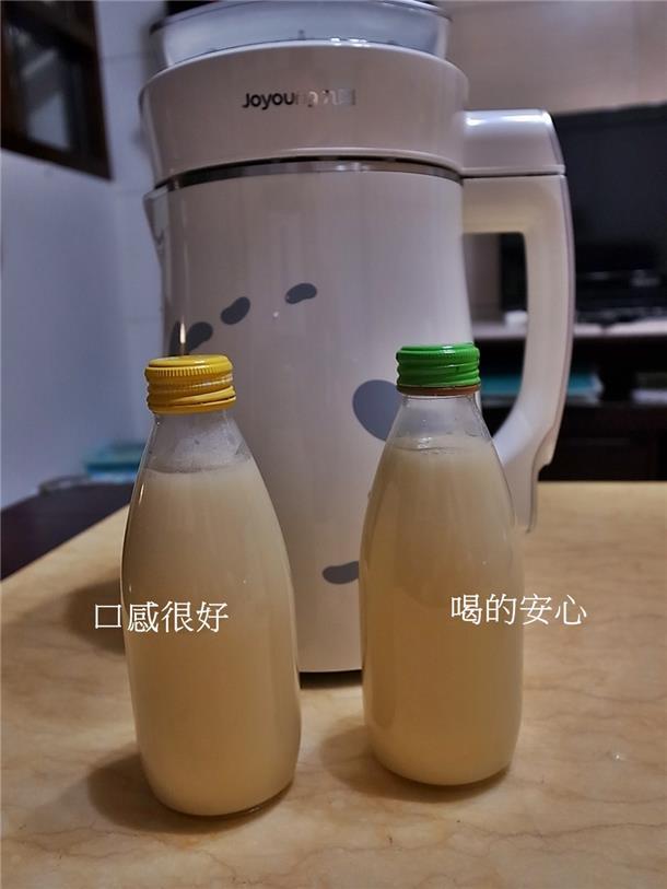 植物奶牛豆浆机DJ13M-D08SG-19