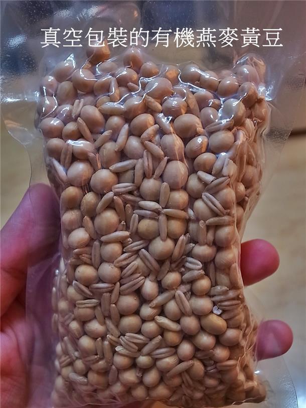 植物奶牛豆浆机DJ13M-D08SG