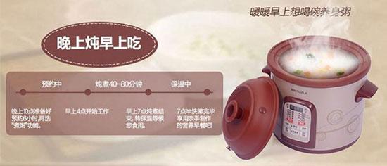 天际最新款紫砂电炖锅DGD40-40SWD
