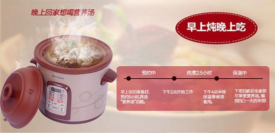 美国天际紫砂炖锅