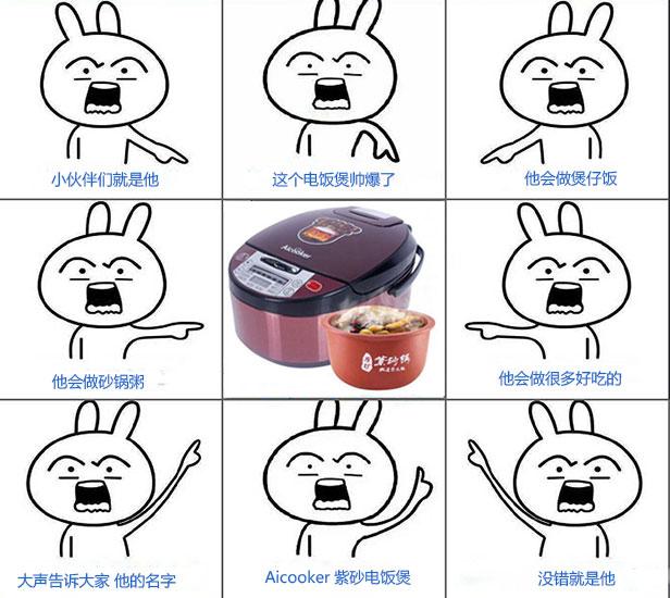 美国智能紫砂电饭煲